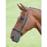Blenheim hannoveri kapsel / pony-cob, must ja havana pruun