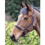 Jester kahevärvilised päitsed / must-lilla; pony, cob, full ja xfull