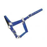 Nailonist päitsed shetlandi ponile / royal sinine