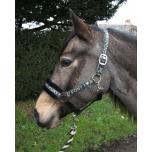 "Komplekt päitsed + jalutusnöör ""Love My Pony"" / kuldne, pony"