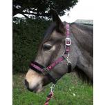 """Komplekt päitsed + jalutusnöör """"Love My Pony"""" / vaarikaroosa; pony, cob ja full"""
