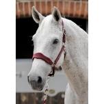 Fliispäitsed hobustele / veinipunane M (cob)