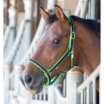 Jester kahevärvilised päitsed / must-roheline; pony ja full
