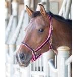Jester kahevärvilised päitsed / must-roosa; pony, cob ja full