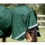 AW19-Buster-Zero-Original-Green-Tail-Flap-RGB-72-zoom.jpg