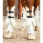 Techno-Wool-Tendon-Boot-White-2_768x.jpg